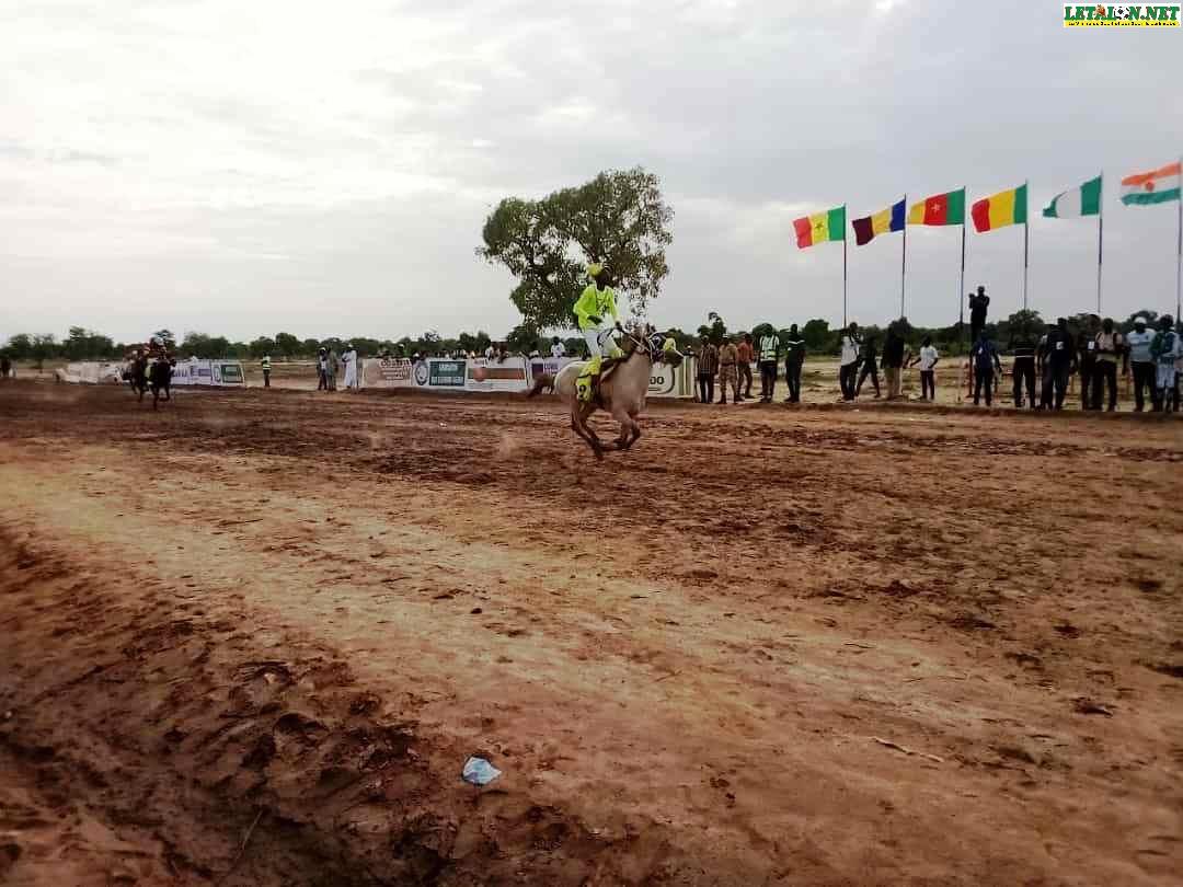 Grand prix hippique de l'intégration africaine : l'association des éleveurs Neema réussit son pari